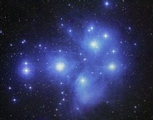 UKS 18. The stars of the Pleiades and their reflection nebula  © Anglo-Australian Observatory/Royal Observatory, Edinburgh