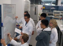 The iGEM team at work