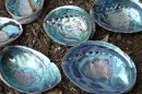 Paua shell nacre. Image by Wolfgang K - Wikimedia commons /w/index.php?curid=1732530