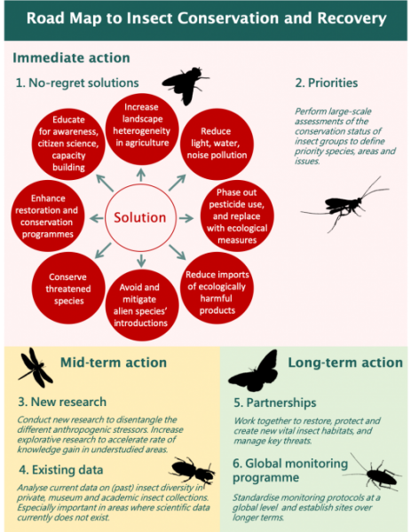 A roadmap for insect recovery
