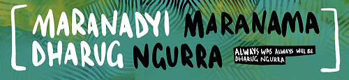 dept-indigenous-studies_email-banner